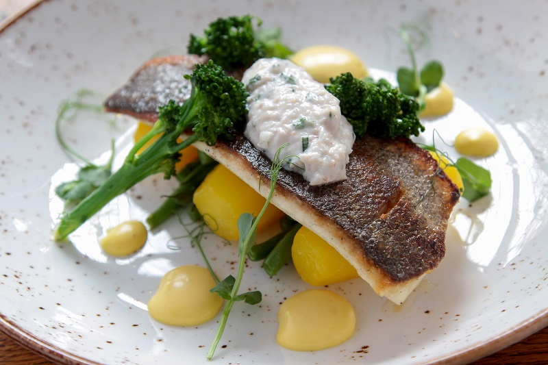 plated sea bass fish meal